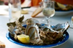 oysters_Talmud_StHilaire_6101
