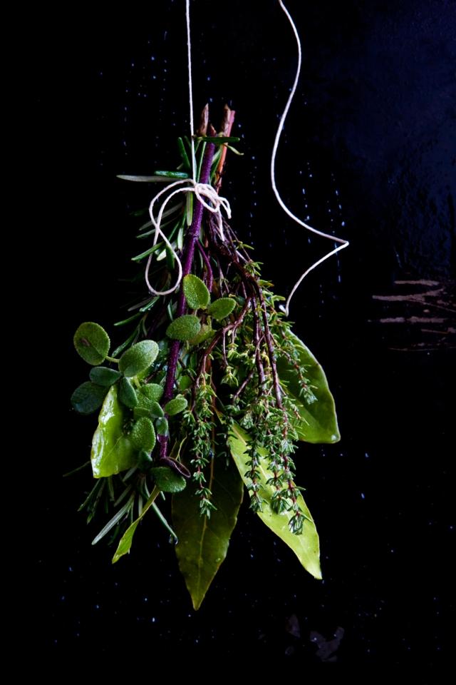 herbs_on_black_1107