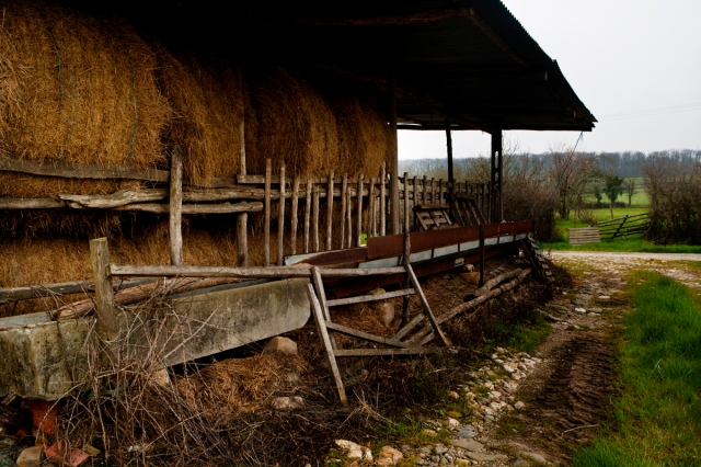 Barn_side_view_0312
