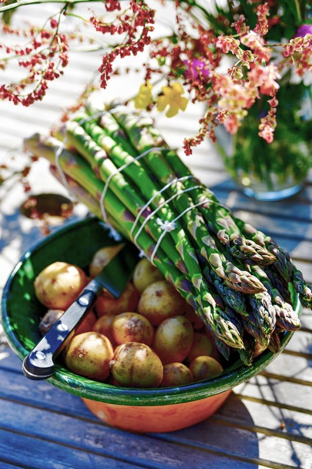 asparagus_pots.1072