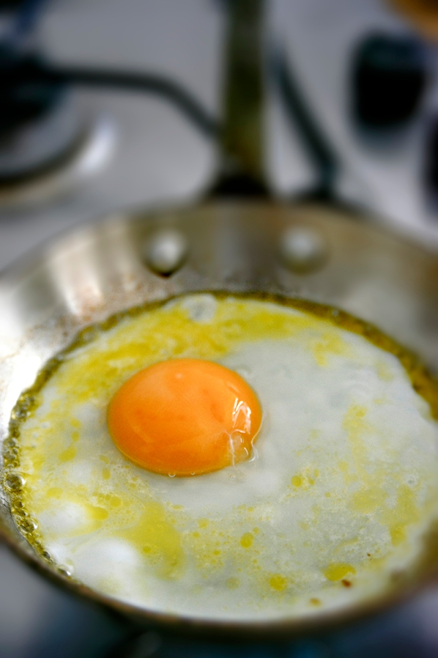 egg_fried_pan_blur_0903