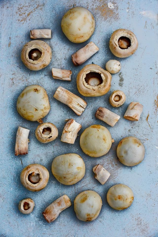 mushrooms3_10may_0642
