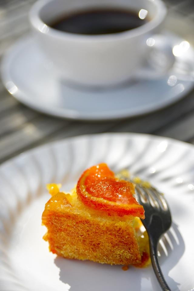 orange cake_0750