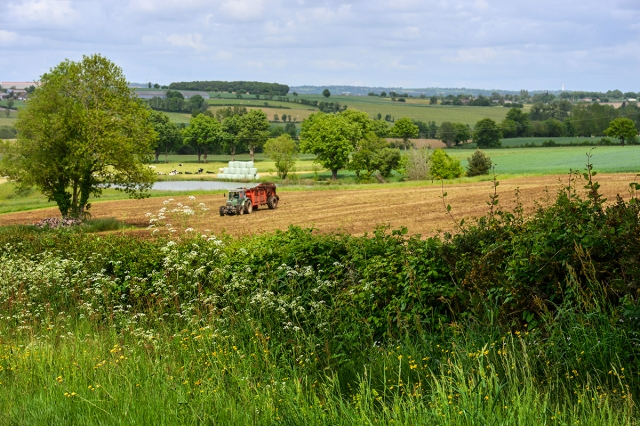 tractor_fields_may15_0821