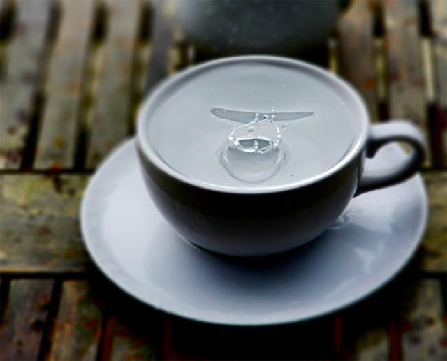 teacup_rain_13