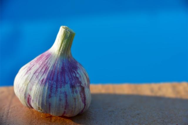 ail_violette_009