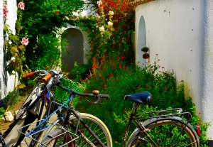 bicycles_10jul_063