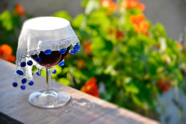 red_wine_08jul_015