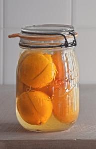 lemons_preserved_0007