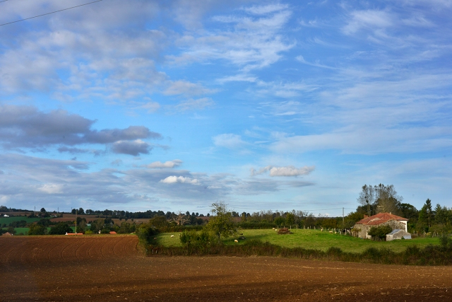 field_cottage1_0019