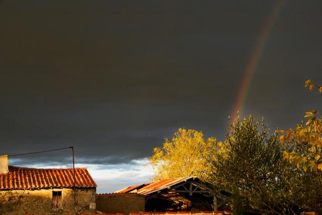 rainbow_LaM_0015