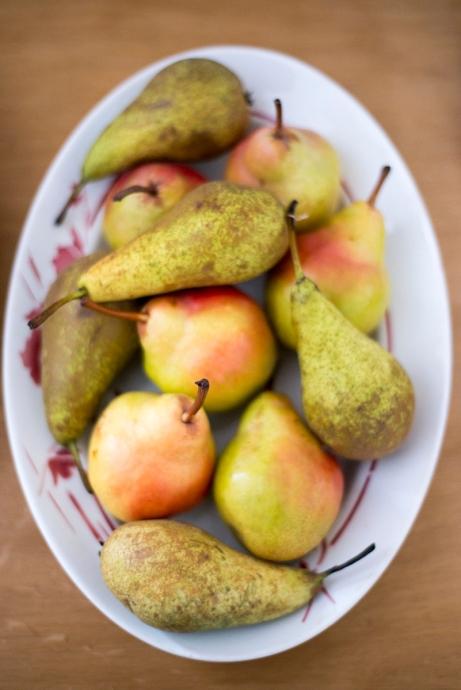 pears_overhead0004
