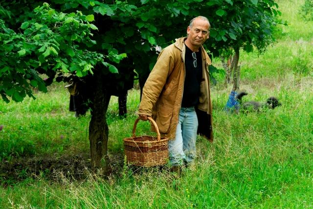 Truffle farmer