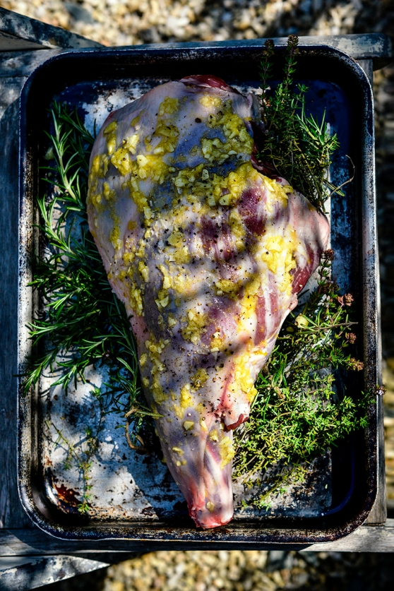 gigot_uncooked_28may_0035