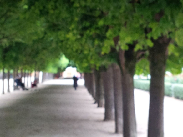 palais_roy_soft trees_164058