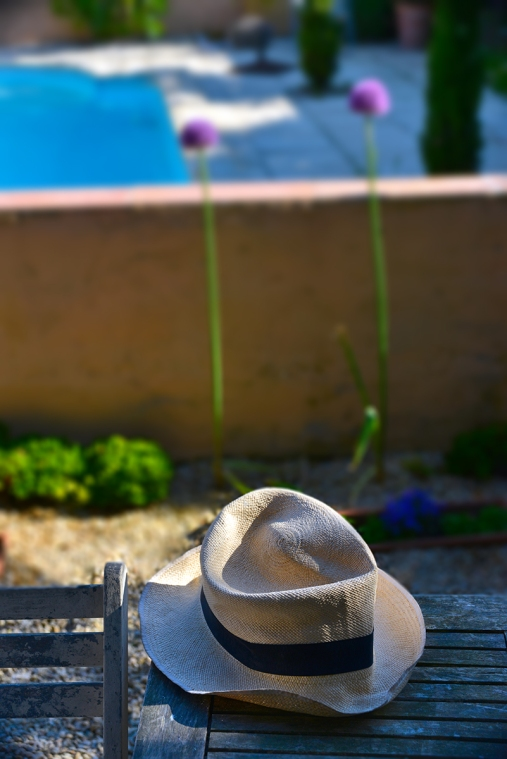 straw_hat_pool_blur_0025