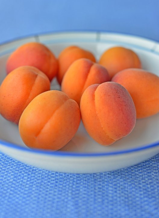 apricots_bowl_0012