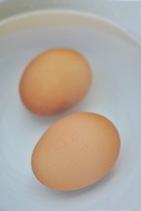 eggs_hard_boiled_0010