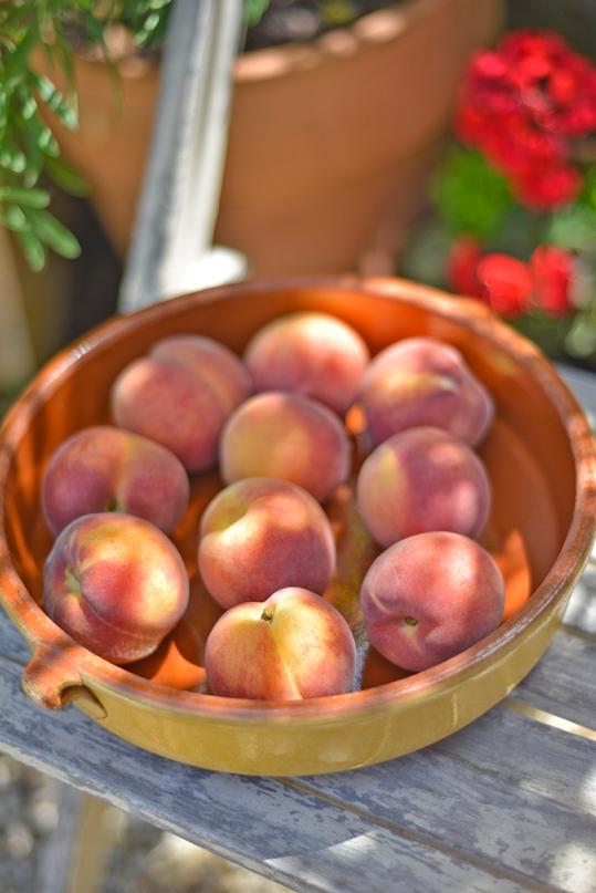 peaches_on_chair_0008