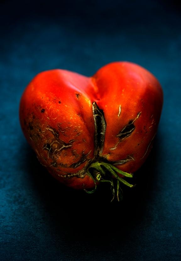tomates_malades_0019