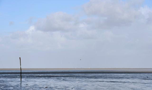 low tide ....