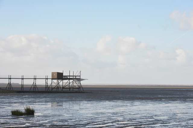 fishing pier..