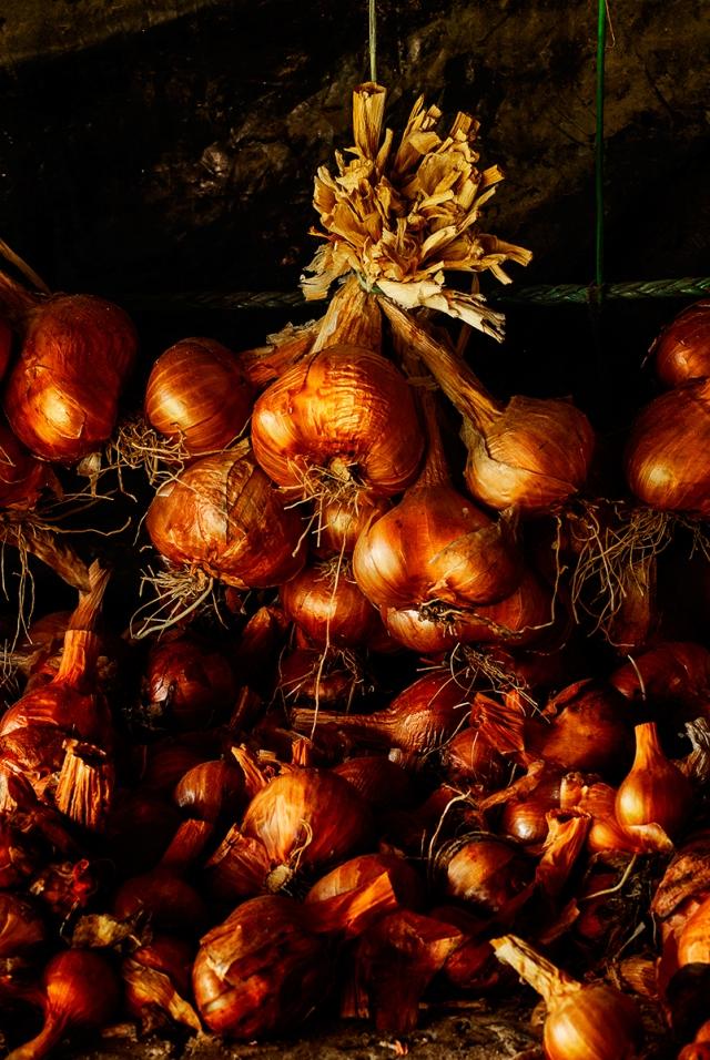 onions_garlic0022