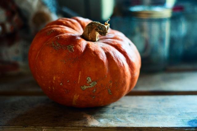 pumpkin_dependance_0025