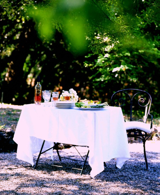 14Lunch al fresco Provence copy