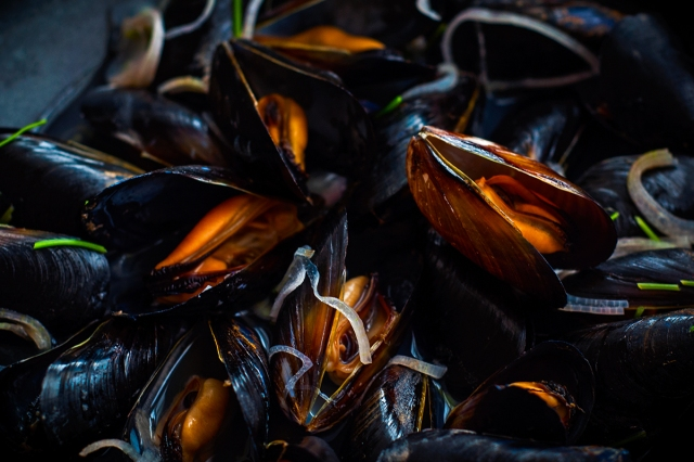 mussels_3834