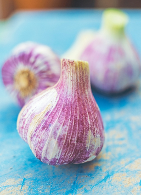 garlic_new_0016