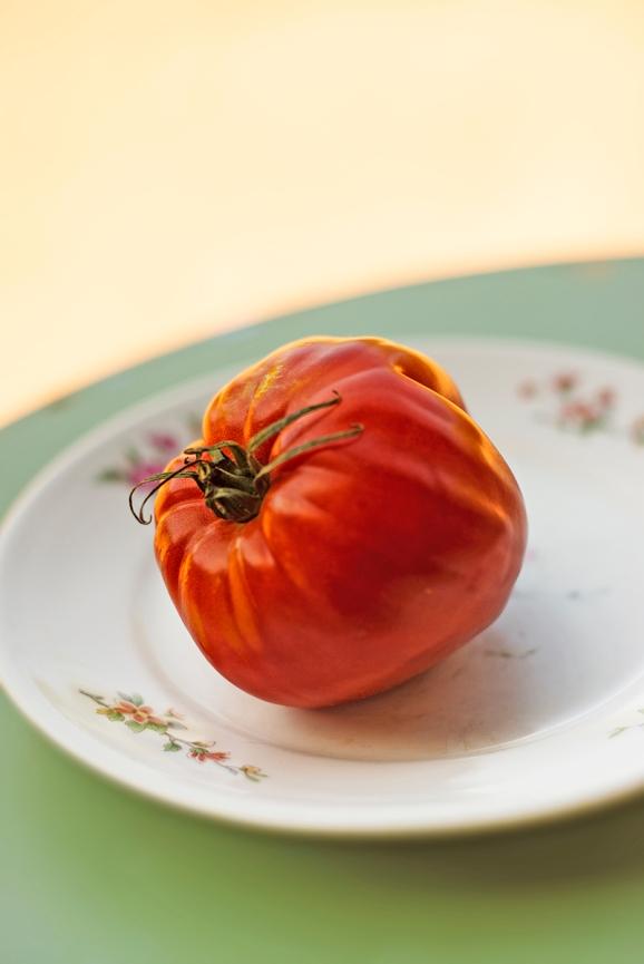tomates_provencales_0038