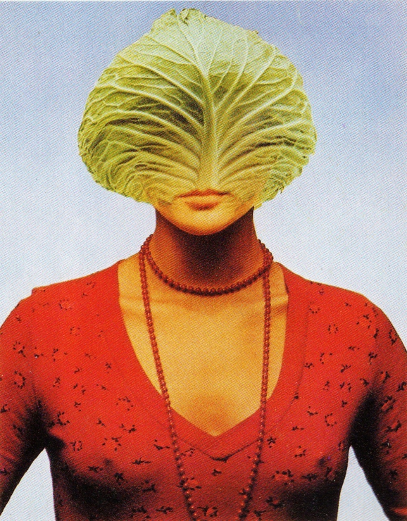 cabbage_face_001