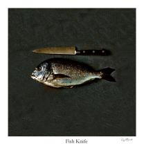 TM Fish Knife